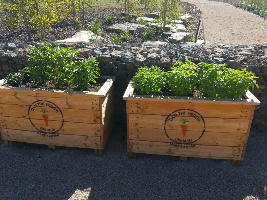 Shop Raised Garden And Wicking Beds